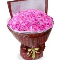 100송이 핑크장미(3369)